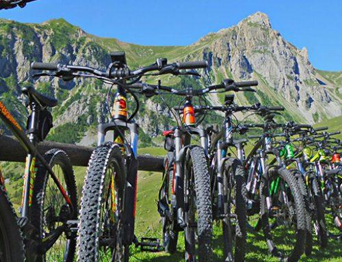 Novità assoluta: E-bike!
